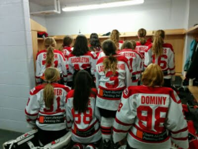 Local painting company sponsors hockey team